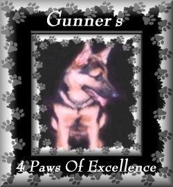 Gunner's Award