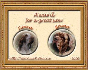 Fiocca & Bruno's Award