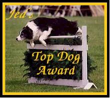 Jed's Top Dog Award