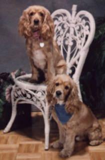 Kayla & Kody